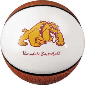 Mini Signature Basketballs