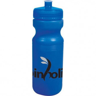 24 oz. Color Changing Water Bottles