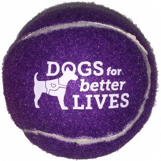 Pet Fetch Toy Tennis Balls