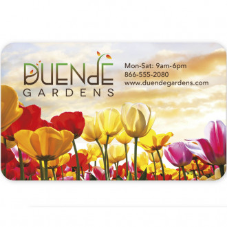 BIC 30 Mil Jumbo 4-color process Business Card Magnets