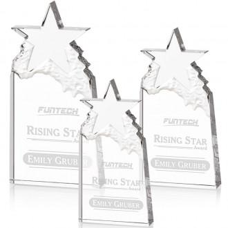 Augustine Award